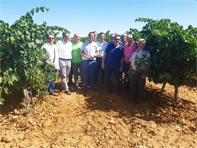 Cabañero subraya la apuesta de la Cooperativa Virgen de las Nieves por una tecnología puntera al servicio de la tradición vinícola de Cenizate