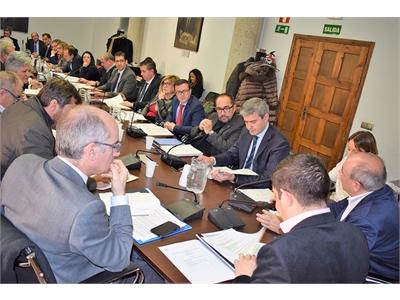 Santiago Cabañero participa en la sesión de trabajo prevista por la Comisión de Diputaciones, Cabildos y Consejos Insulares de la FEMP
