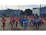 El Campeonato Provincial de Deporte en Edad Escolar reunió a más de 500 jóvenes atletas en el Circuito de Campo a Través celebrado en Tobarra
